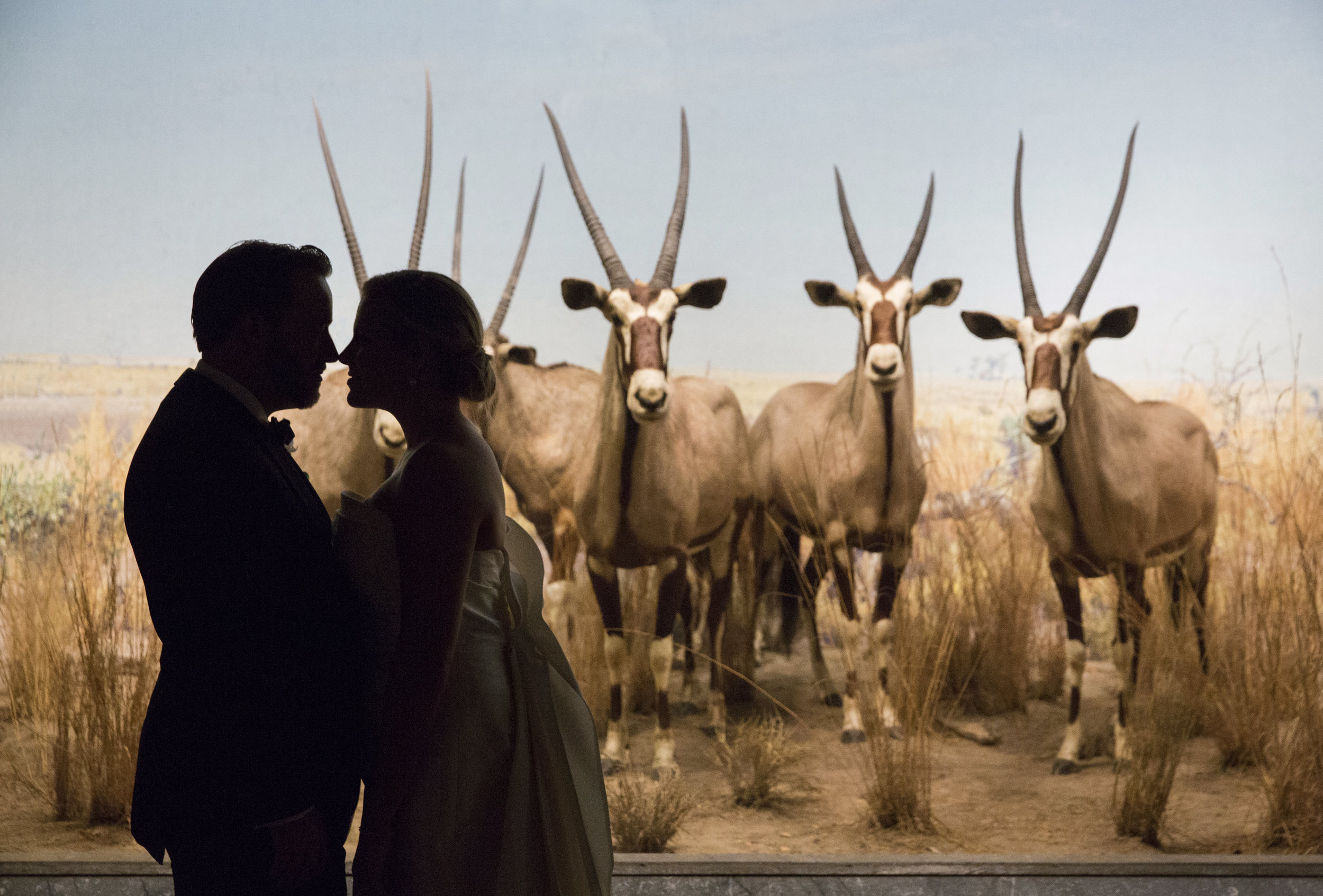 wedding-american-museum-of-natural-history