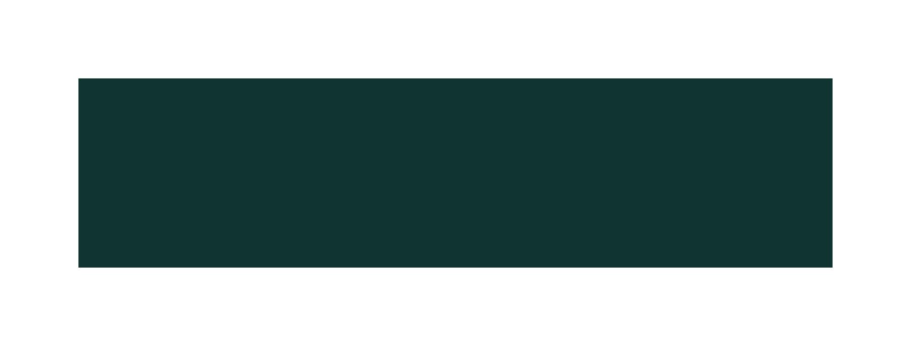 martha stewart weddings logo green.png