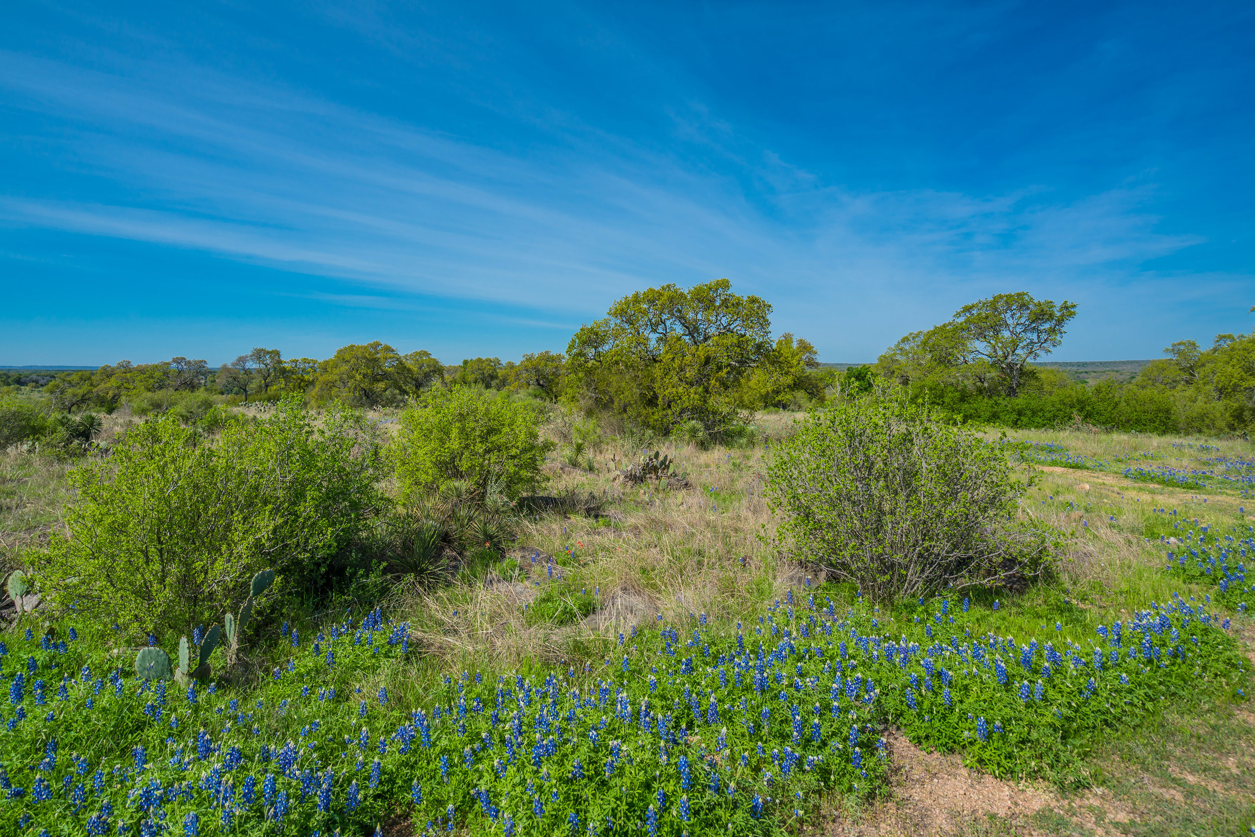 Grape Creek Point Anders Ranch Realty