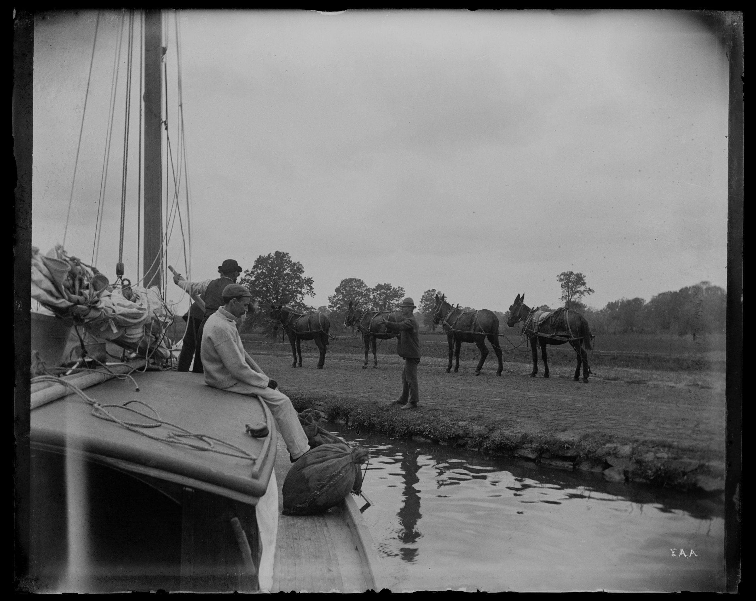 """Four mules & Wabun,"" on the yacht ""Wabun"" in the Delaware and Raritan Canal, New Jersey, October 18, 1892"