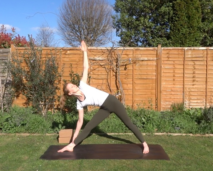 beginner's series - This course includes 5 classes, which cover the foundations of vinyasa yoga: sun salutations, standing postures, twists, balancing postures and back bends. The perfect course to learn the names of postures and the correct alignment, as well as practise some basic flows.