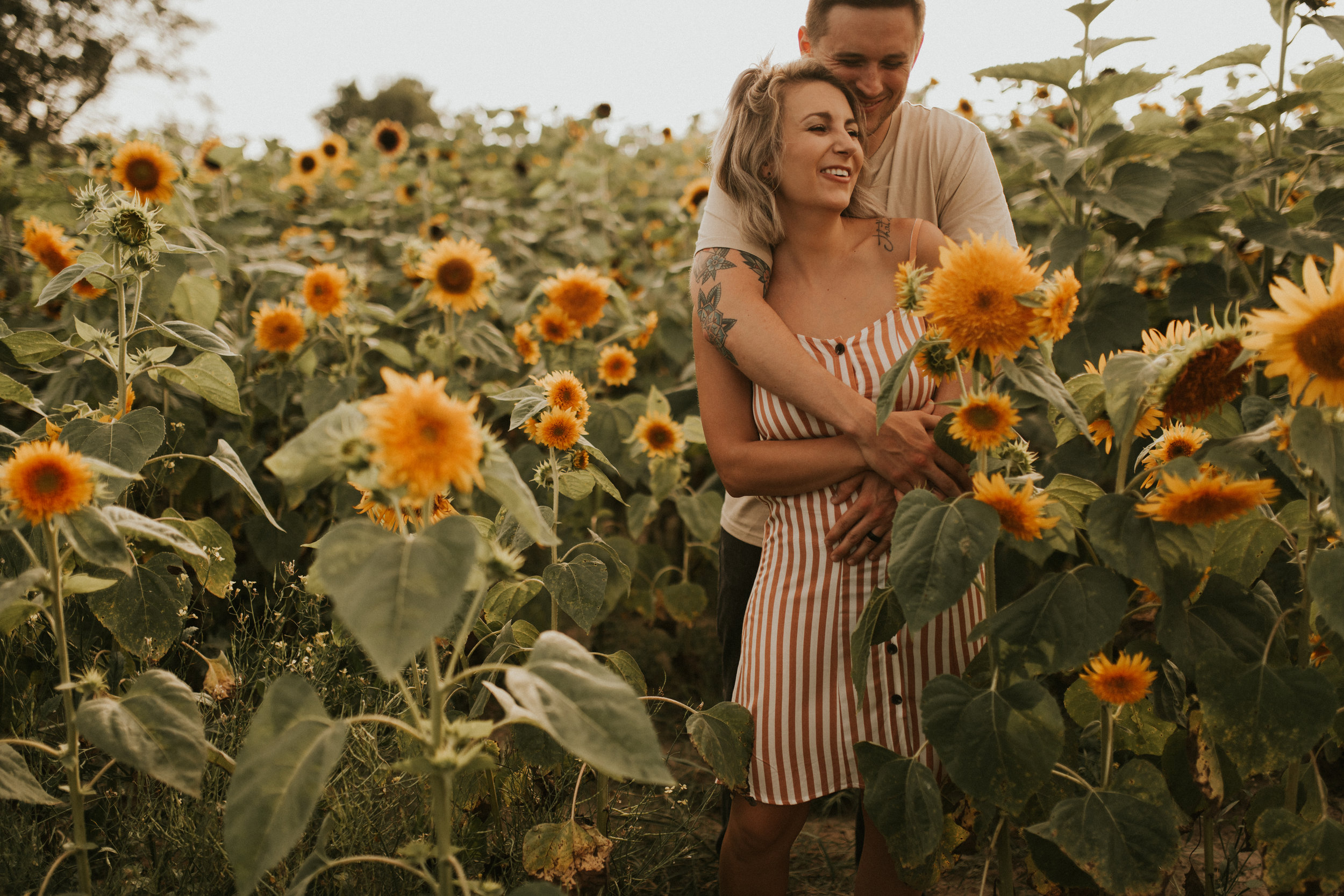 Cassie + Hunter's Sunflower Dream -