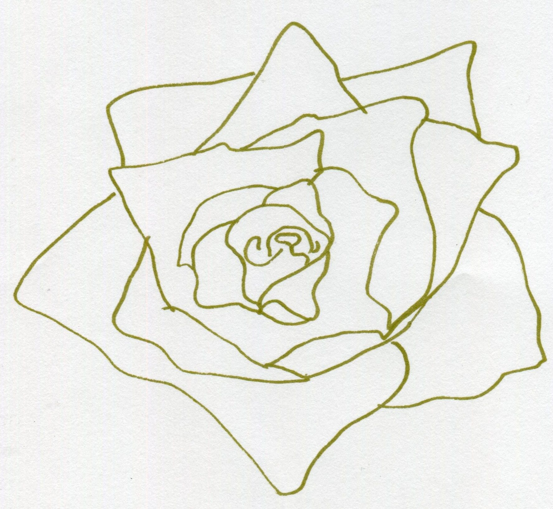 #14: HEART OF THE ROSE (DRAWING — BONUS)