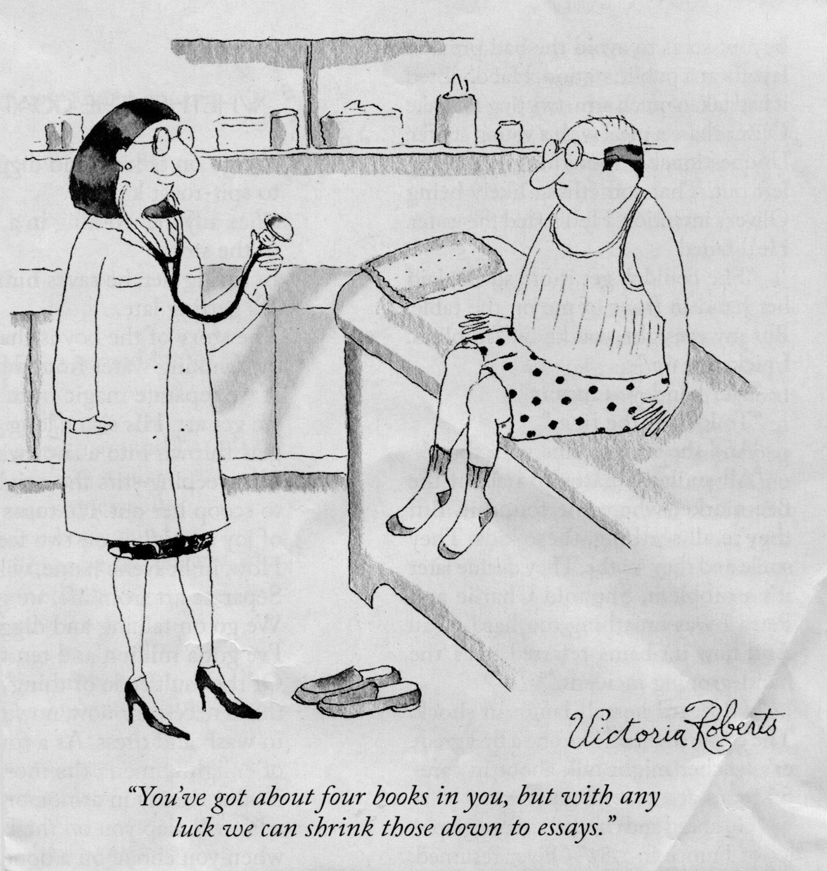 New Yorker cartoon, books & essays.jpg
