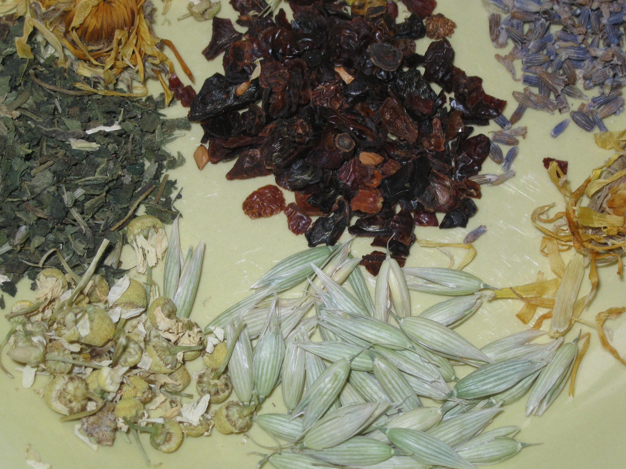 Herbal teas on plate #5.JPG