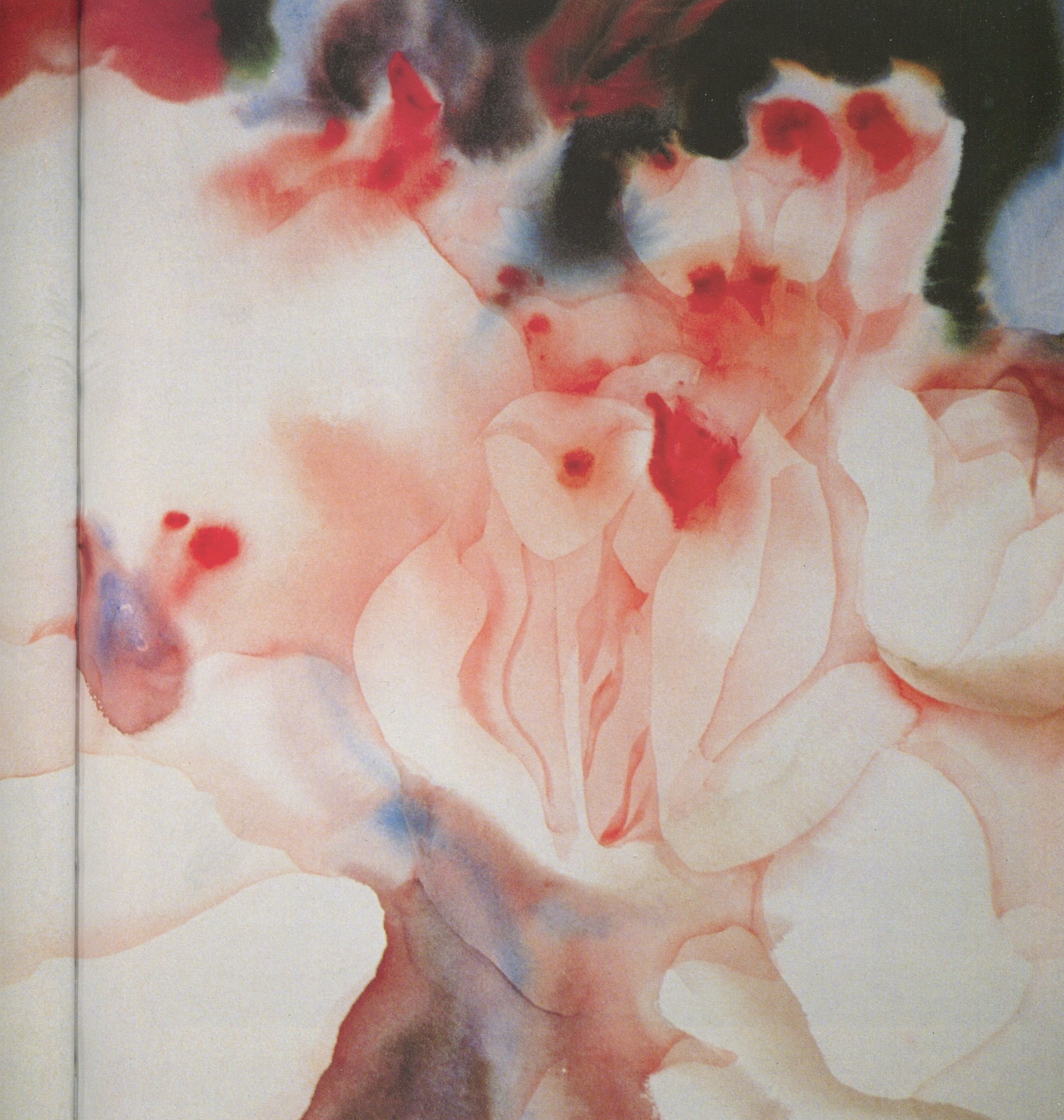 """Nechis calls this painting """"Genesis,"""" and says of its creative process: """"Small flowers appear to spring from the large one. I made the flower centers with spurts of wet paint on wet paper, then let it dry. Next I added glazes for hard edges that would sharpen the image."""" -"""