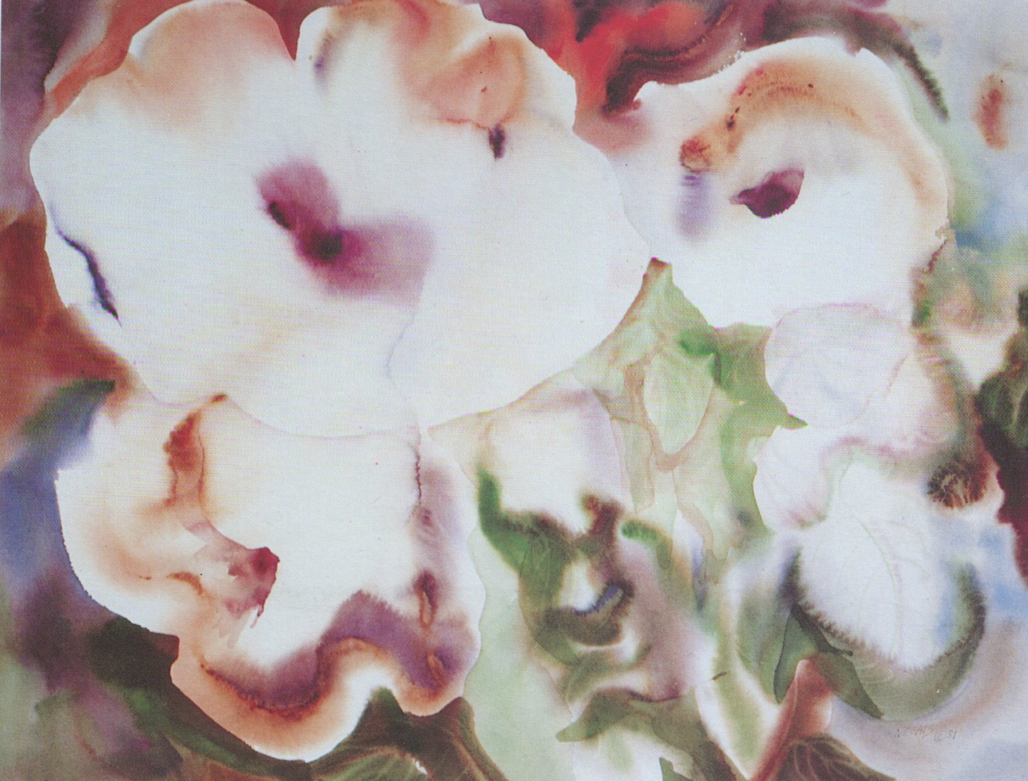 """The painting, """"Flower Power,"""" was just such an """"accident."""" Nechis writes: """"The white shape near the left edge, describing the turn of a petal, was the result of an uneven wetting of the paper. An unwetted spot remained white, so I made use of it."""" -"""