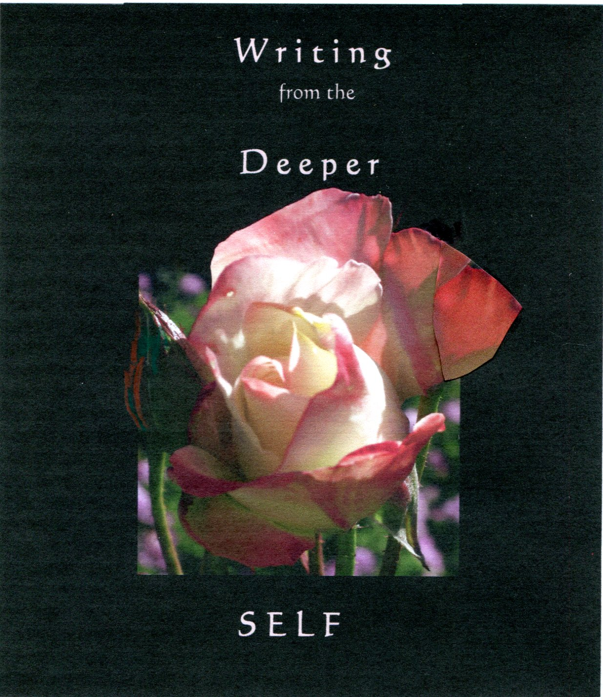 WFDS rose image with title 200.jpg