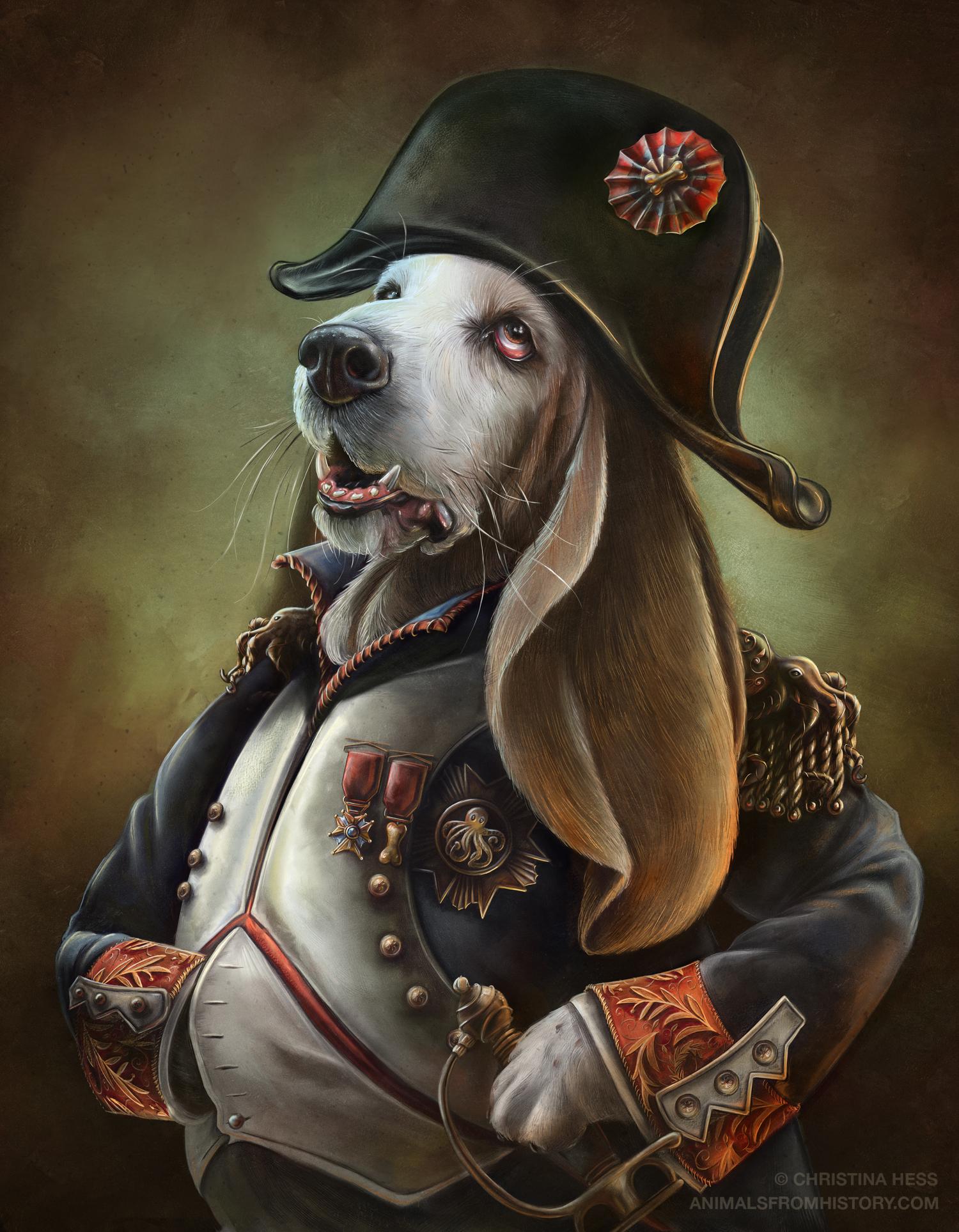 napoleon-boneaparte-christina-hess-afh.jpg