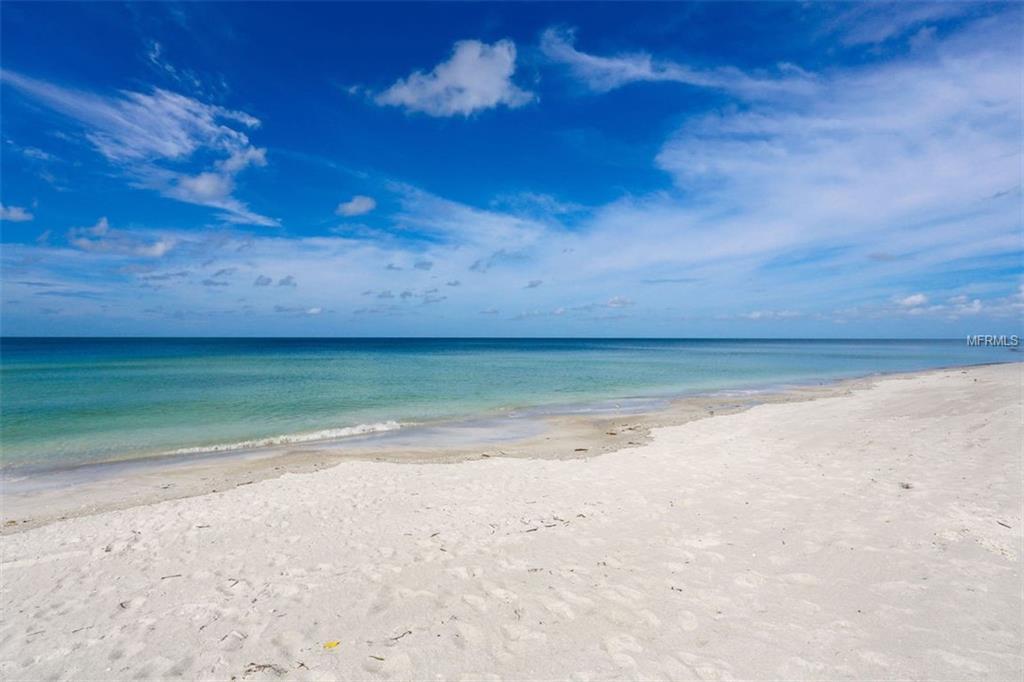 beach 11.jpg