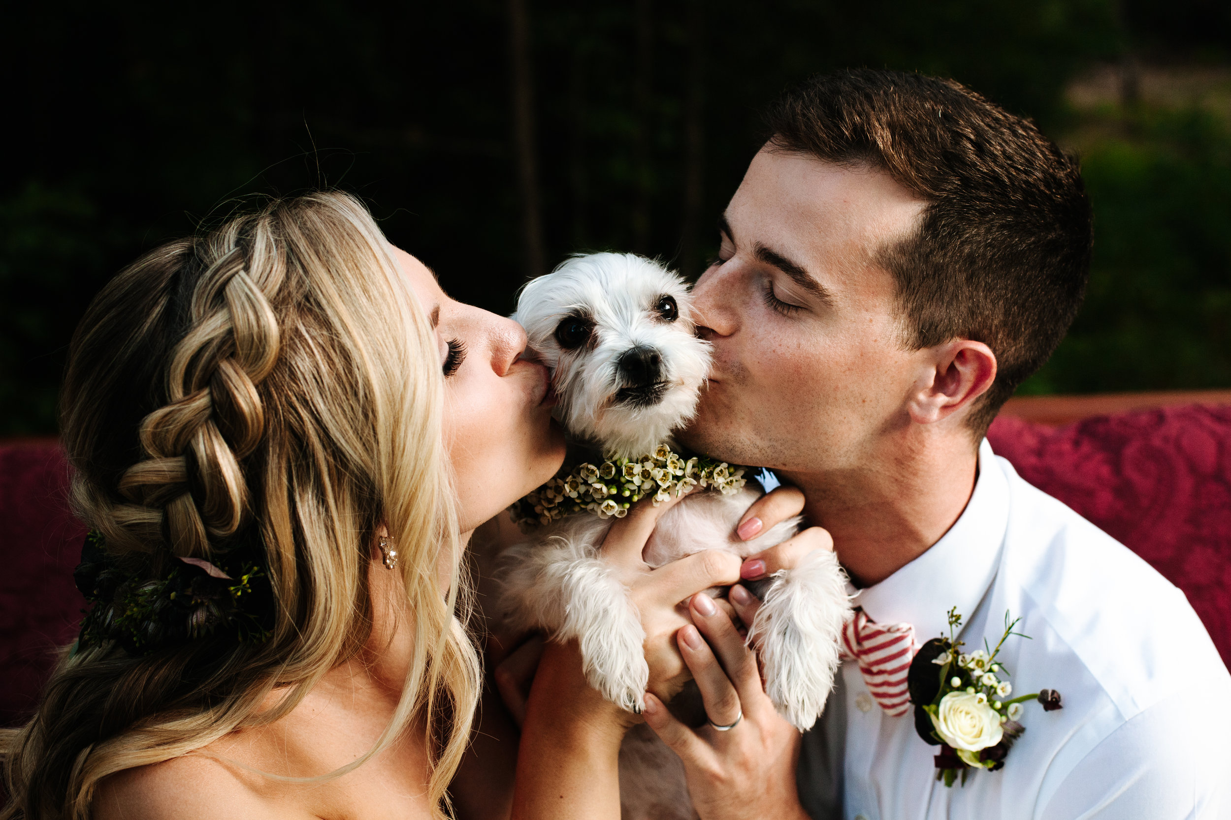 How to have your dog in your wedding-3270.jpg