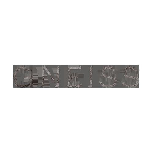 Logos_Gneiss2.png