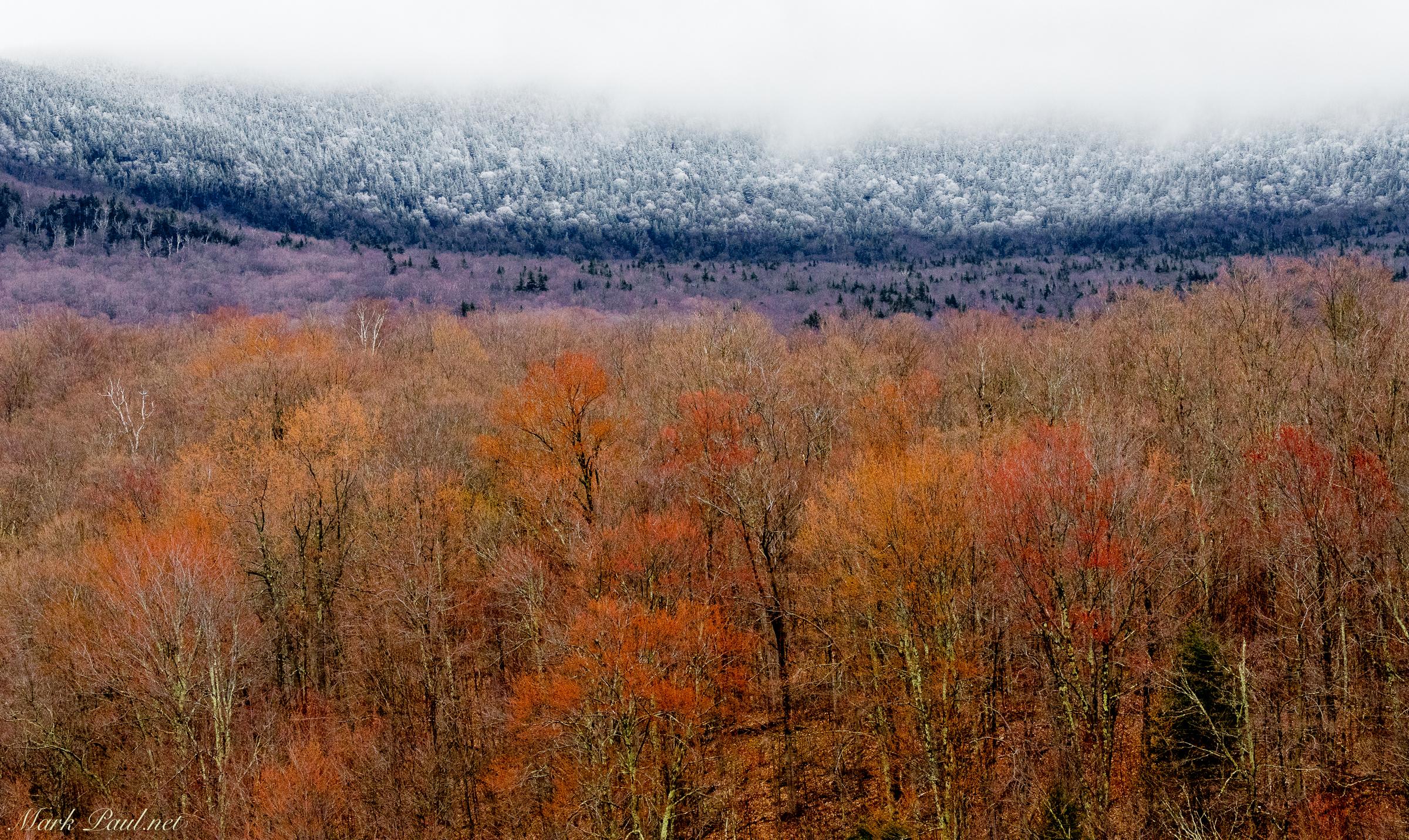 The Line Between Winter & Spring