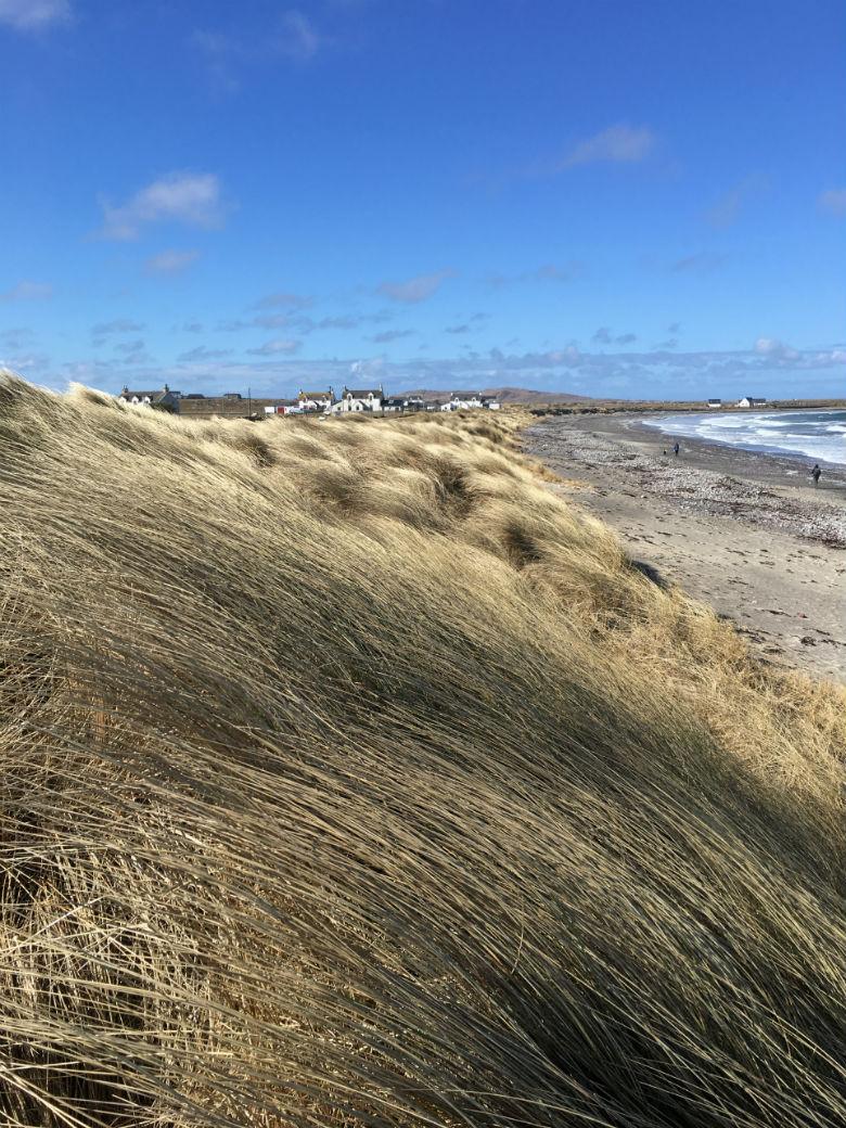 Tiree sand dunes