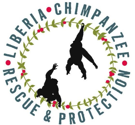 Liberia Chimpanzee Rescue.jpg