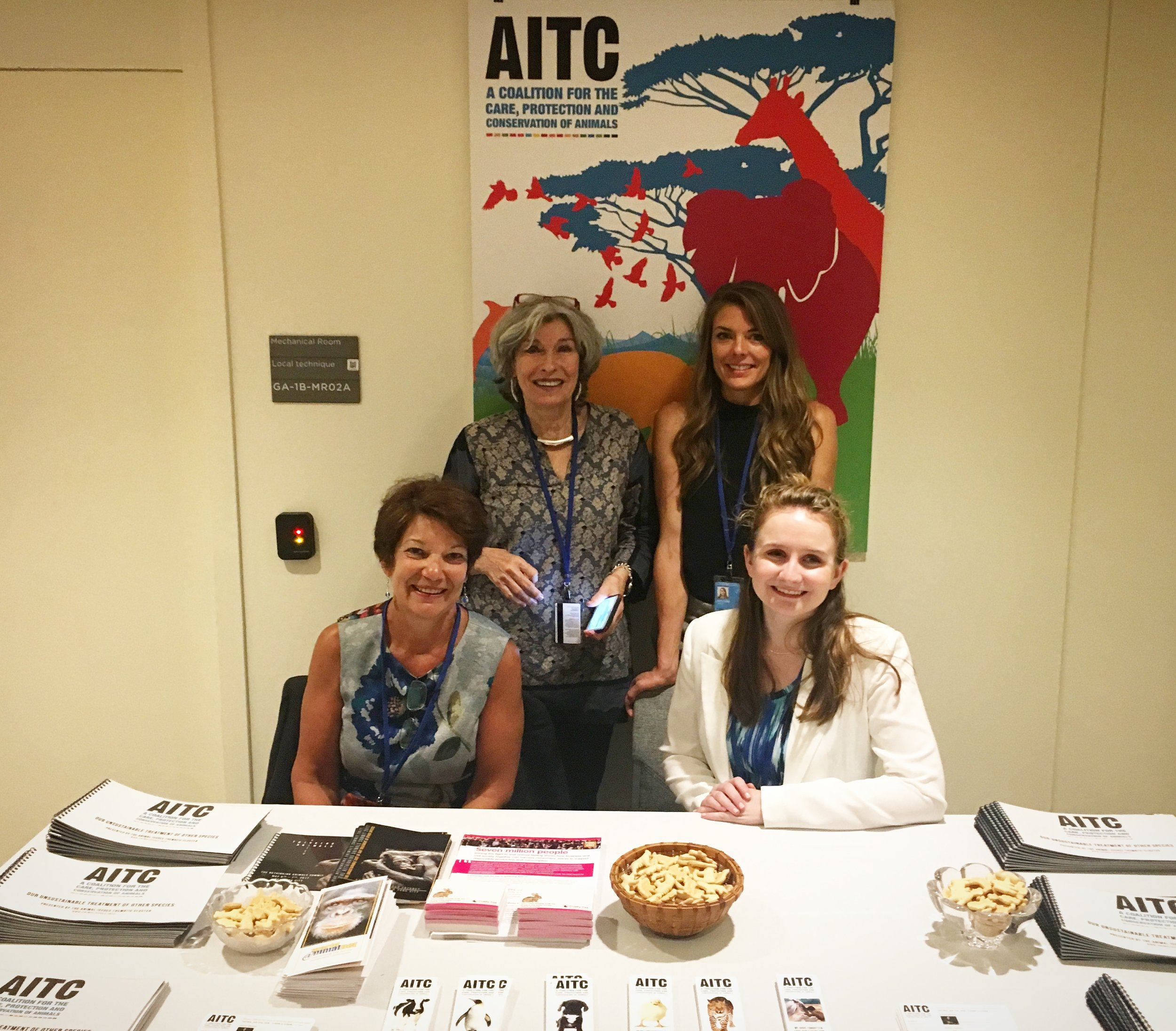 Members of the AITC at the 2018 HLPF.