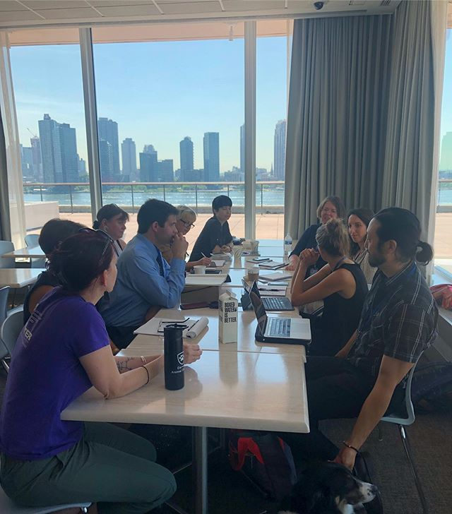AITC morning strategy meeting at #HLPF2019 . Stop by our booth in the conference room building to find out about the work we do to highlight the indivisible relationship between animal protection and sustainable development! #HLPF #GlobalGoals #SDGs @unitednations