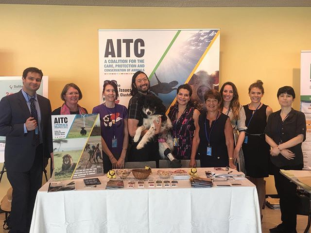 The AITC team is here throughout #HLPF2019 working on drawing the crucial connections between animals and the #SDGs. Our connection to animals is a cross-cutting issue related to all 17 SDGs. Come find out more at our booth! #HLPF #GlobalGoals