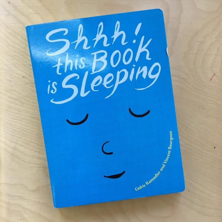Shhh! This Book is Sleeping  | Cedric Ramadier and Vincent Bourgeau
