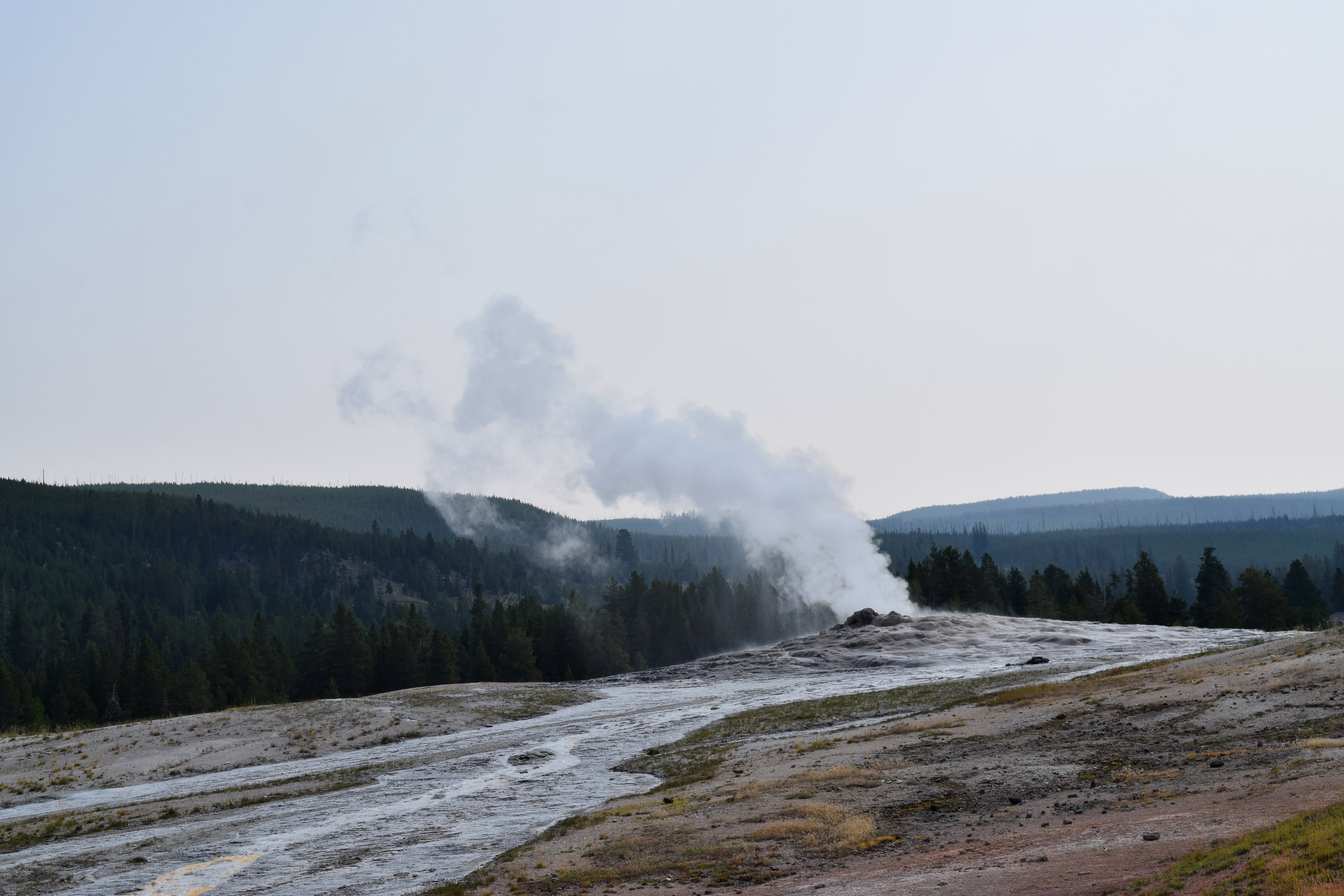 Old Faithful was named so because it would produce an eruption of water and steam precisely every 60 minutes. An earthquake in 1959 dramatically altered the landscape of the Yellowstone region and changed Old Faithful's schedule, making it less predictable. Now she's not so faithful.