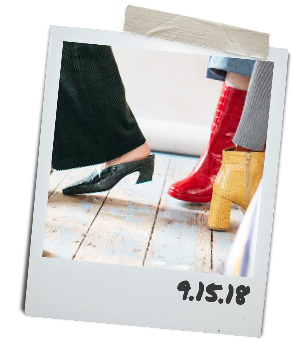 shoe-cover-2.png
