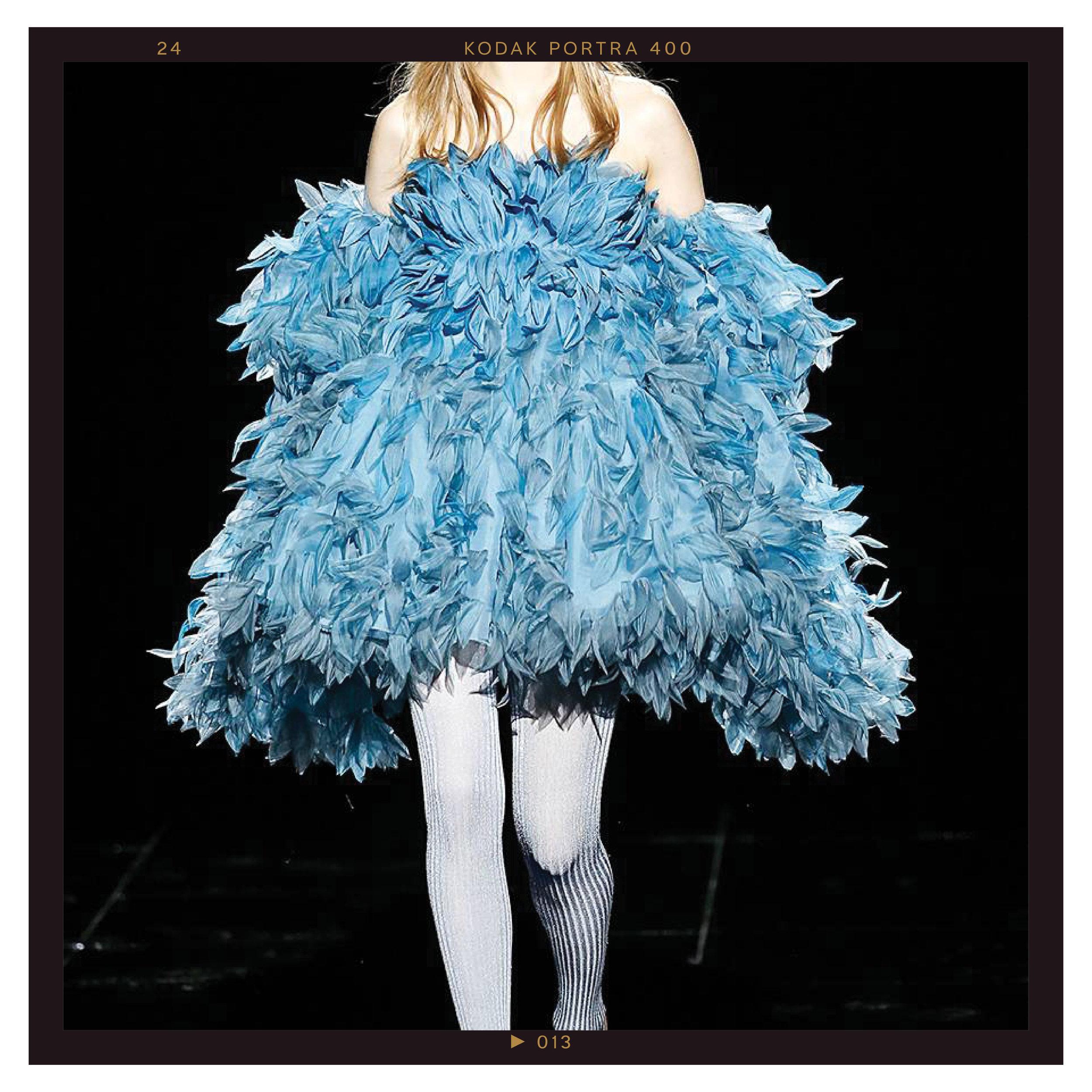 7. Fancy Feathers