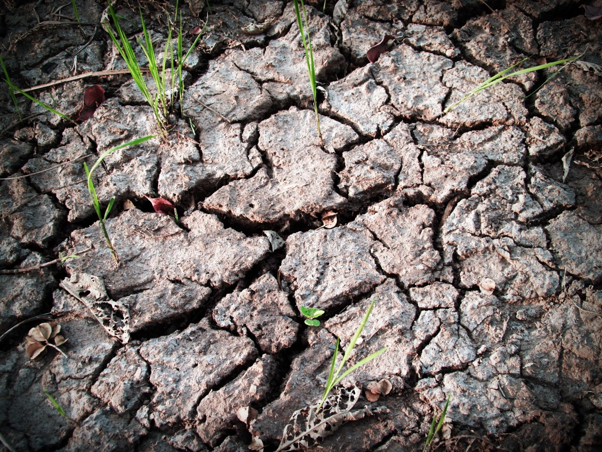 soil_rough_earth_split_crack_ecology_summer_broken-561747.jpg!d.jpg