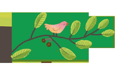 birdbranch.png