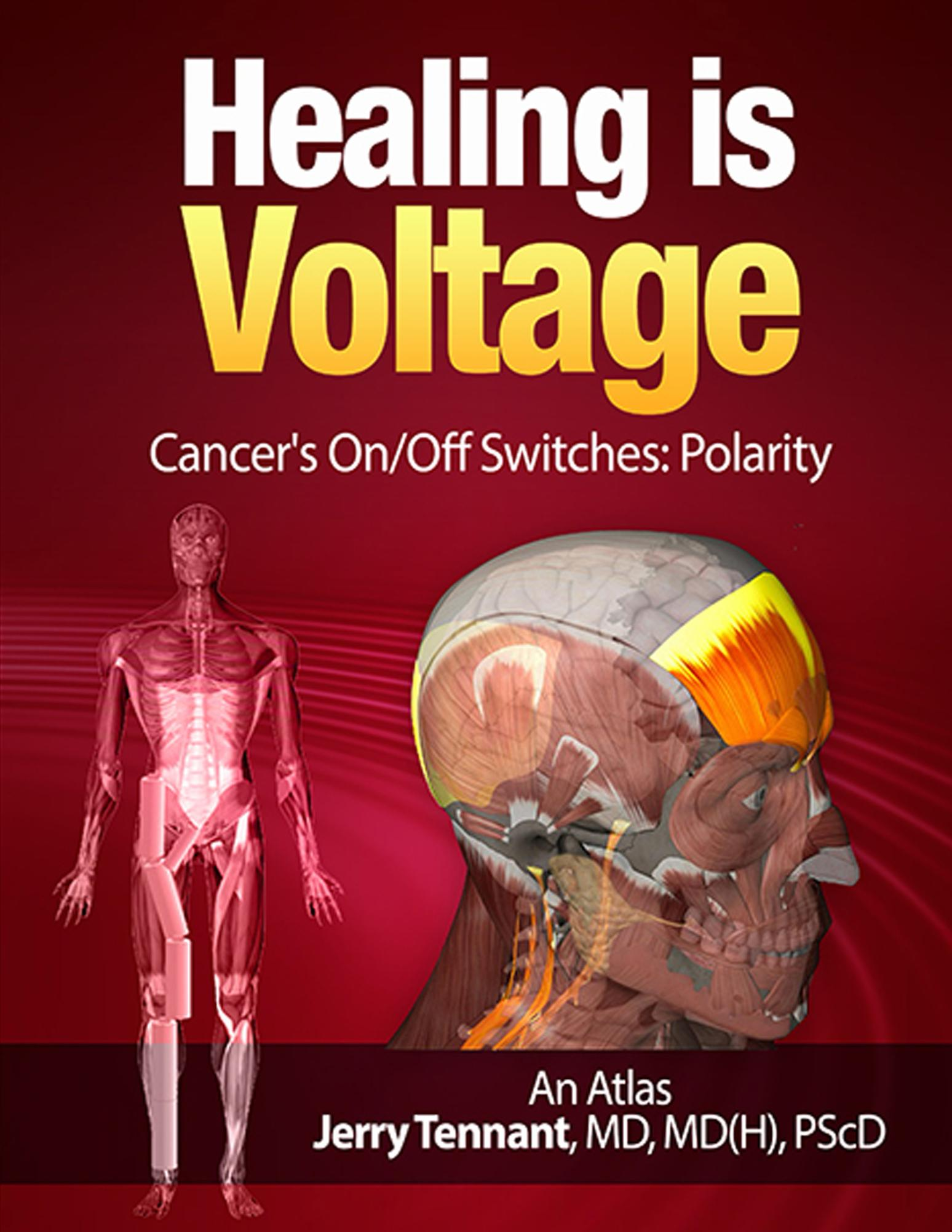Very few health articles mention pH as a factor of voltage.They persist on explaining everything through the lens of chemical reactions only, leaving us to continue believing only in the paradigm of mechanical (surgery), and chemical (drugs) solutions to issues. We are missing a HUGE component!