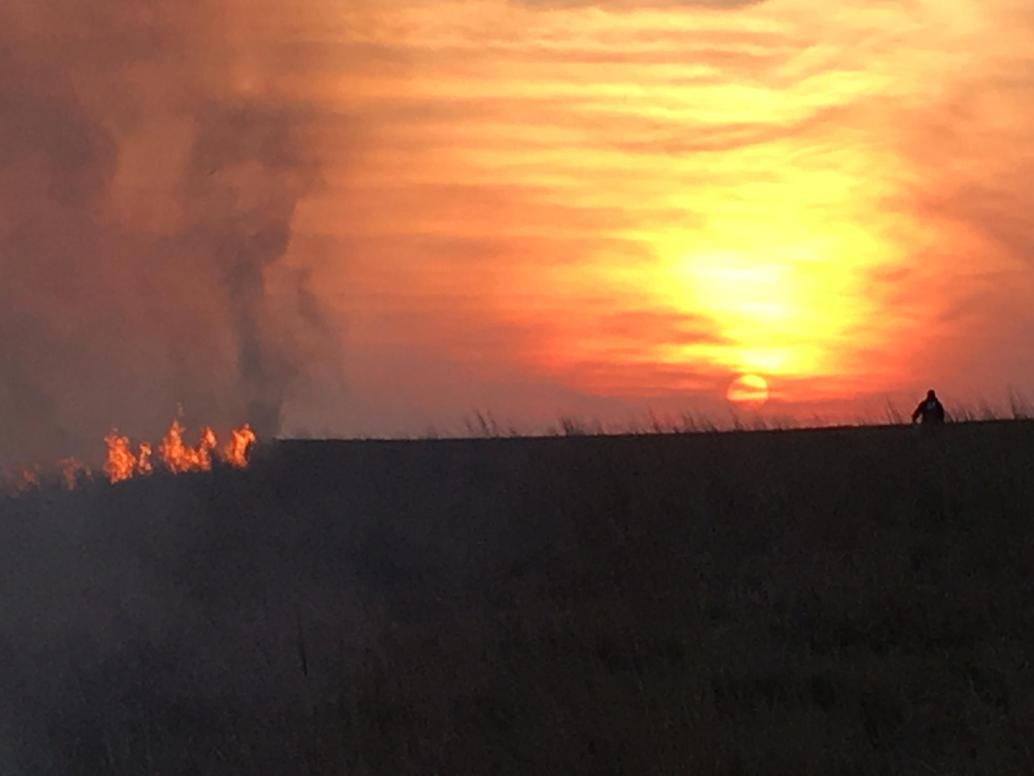 Burn 3 Sunset.JPG