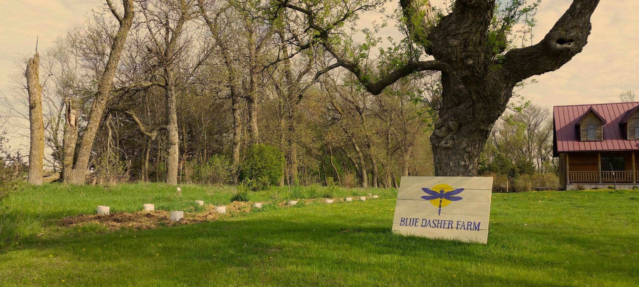 Blue Dasher Farm Store -