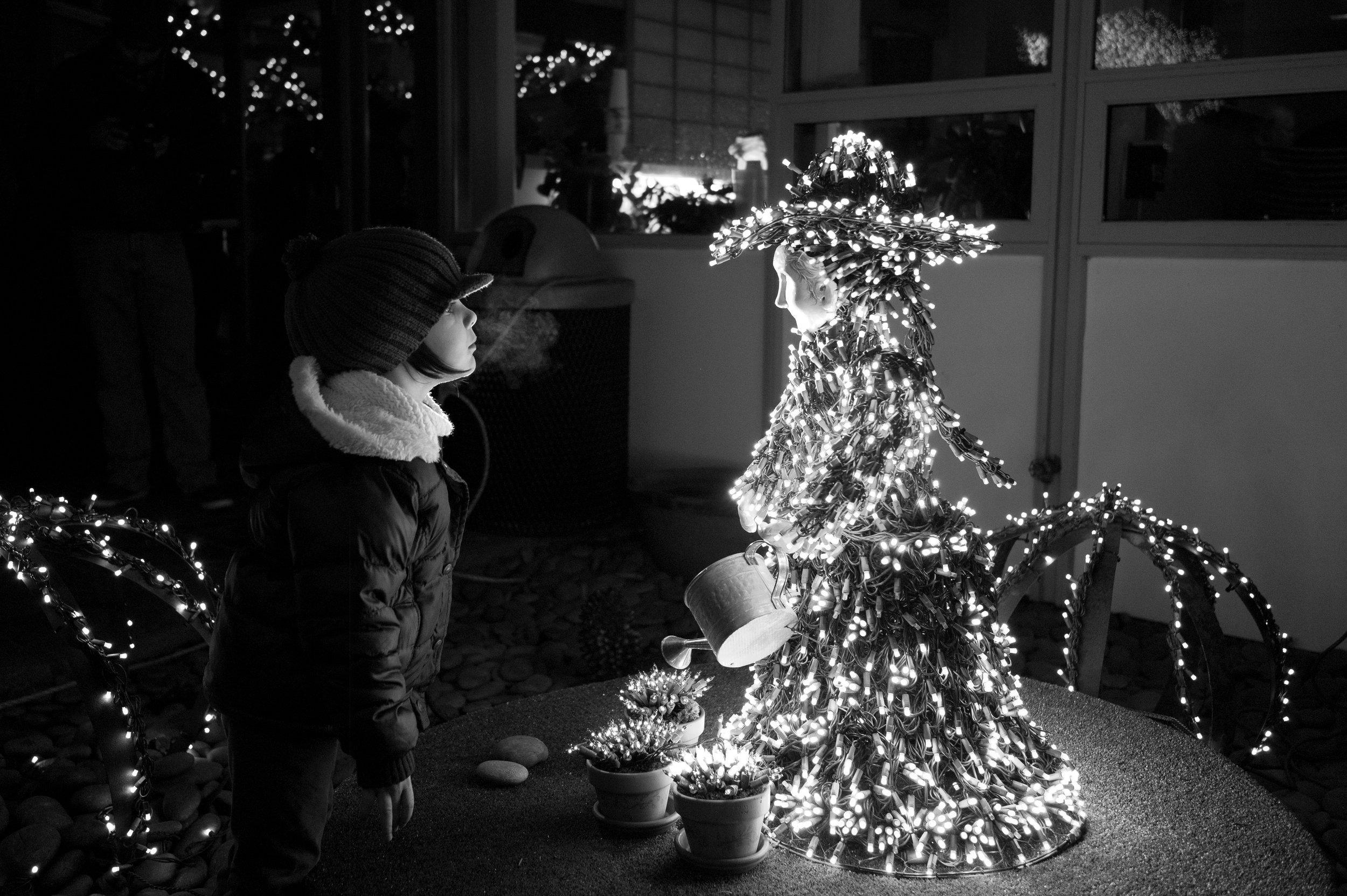 2011_Dec_Seattle_Christmas_84.jpg