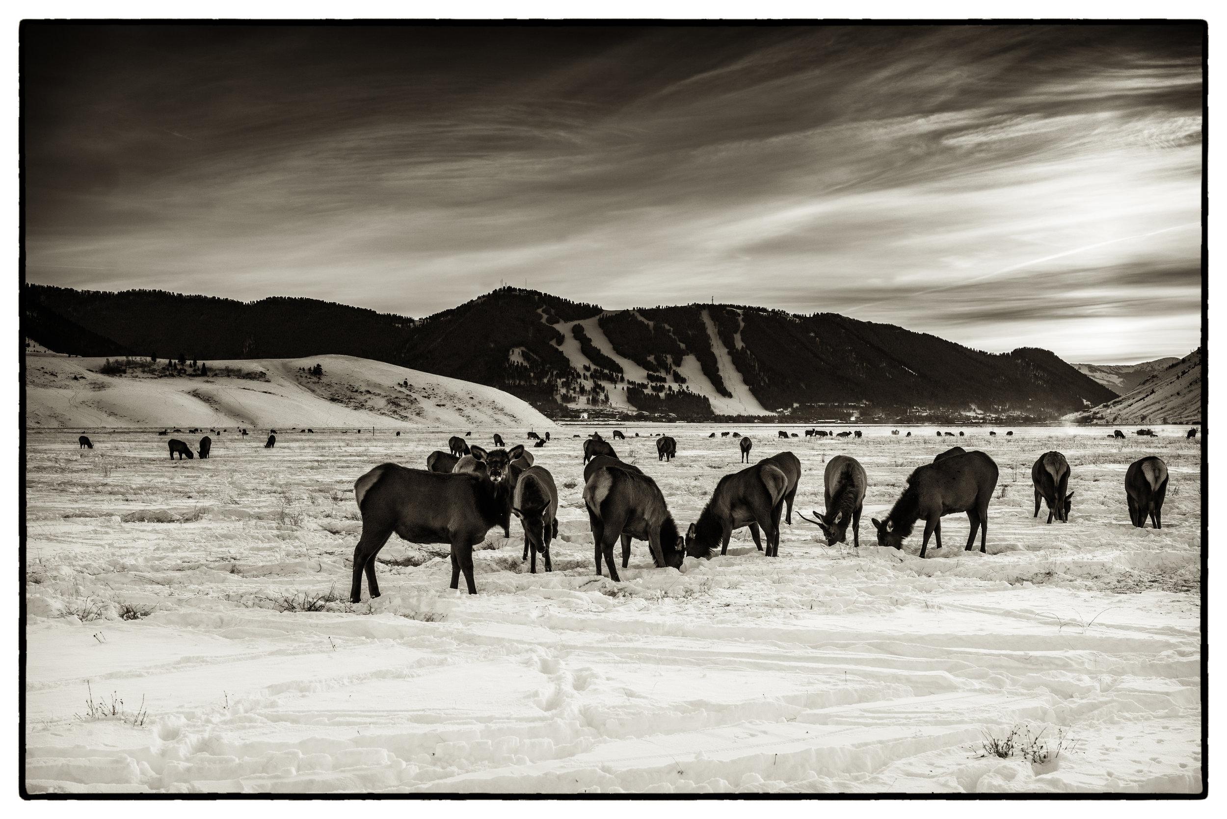 2015_Dec_2015-12-Wyoming_217-Edit.jpg