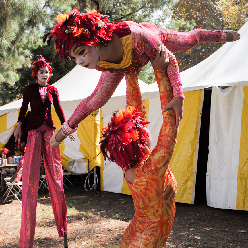 2015_Oct_2015-10-Israeli_Festival_LPC_417.jpg