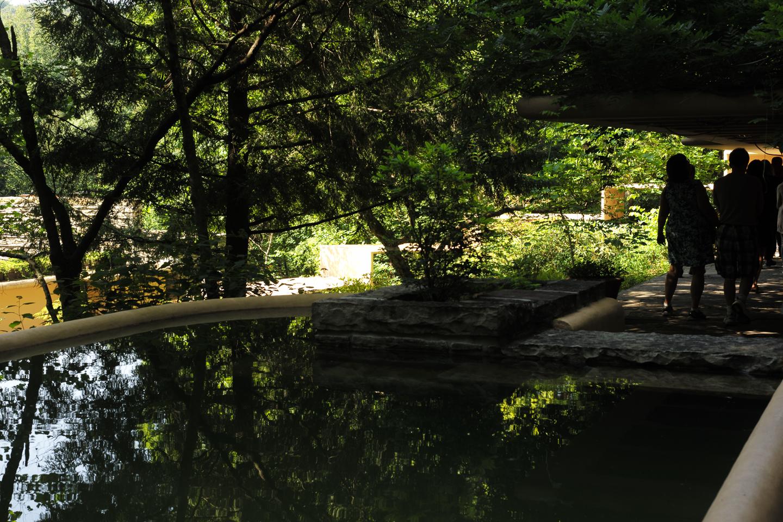 2015_Jul_2015-7-Falling_Water_Caves_3_71.jpg