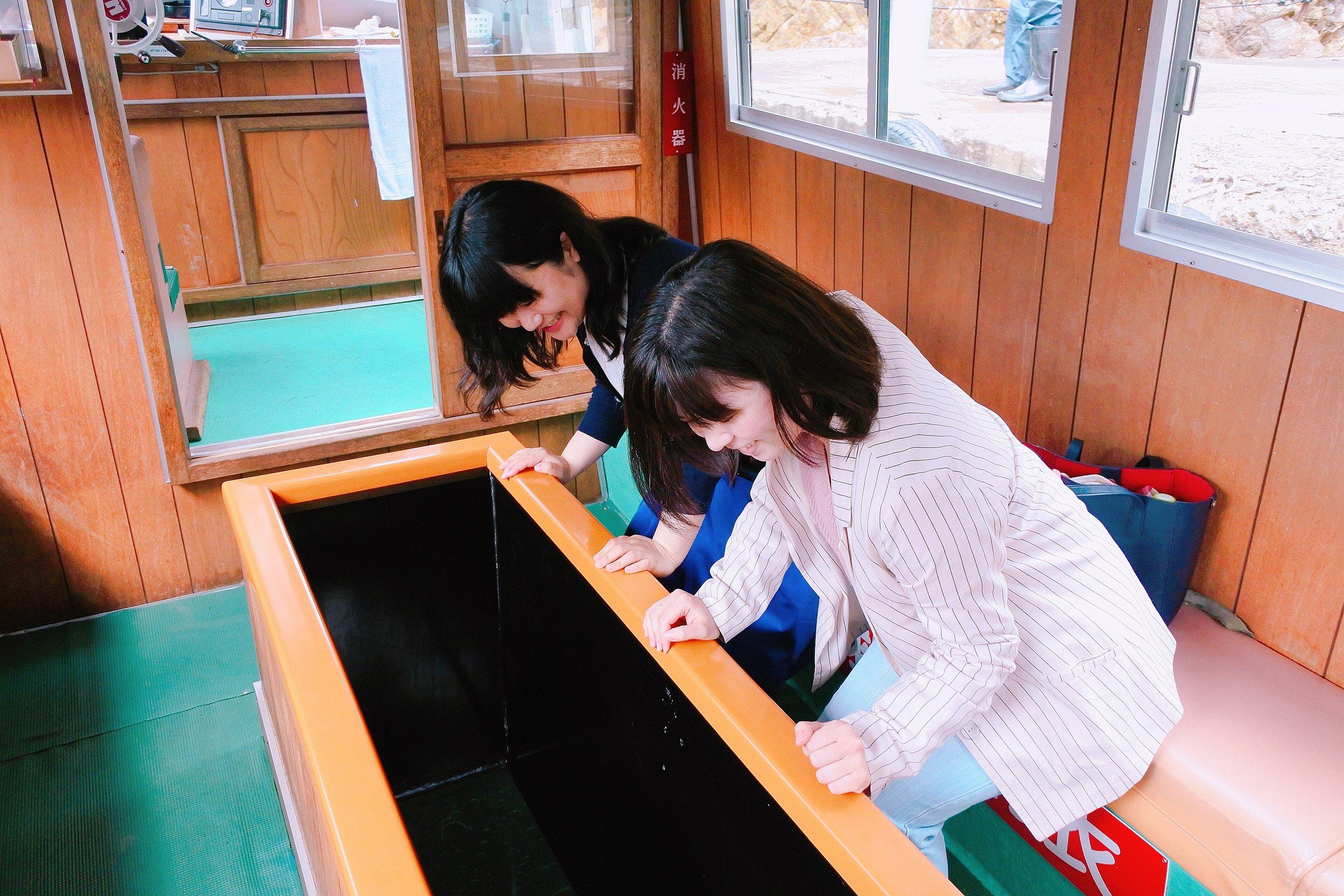 海中透視船(グラスボート)