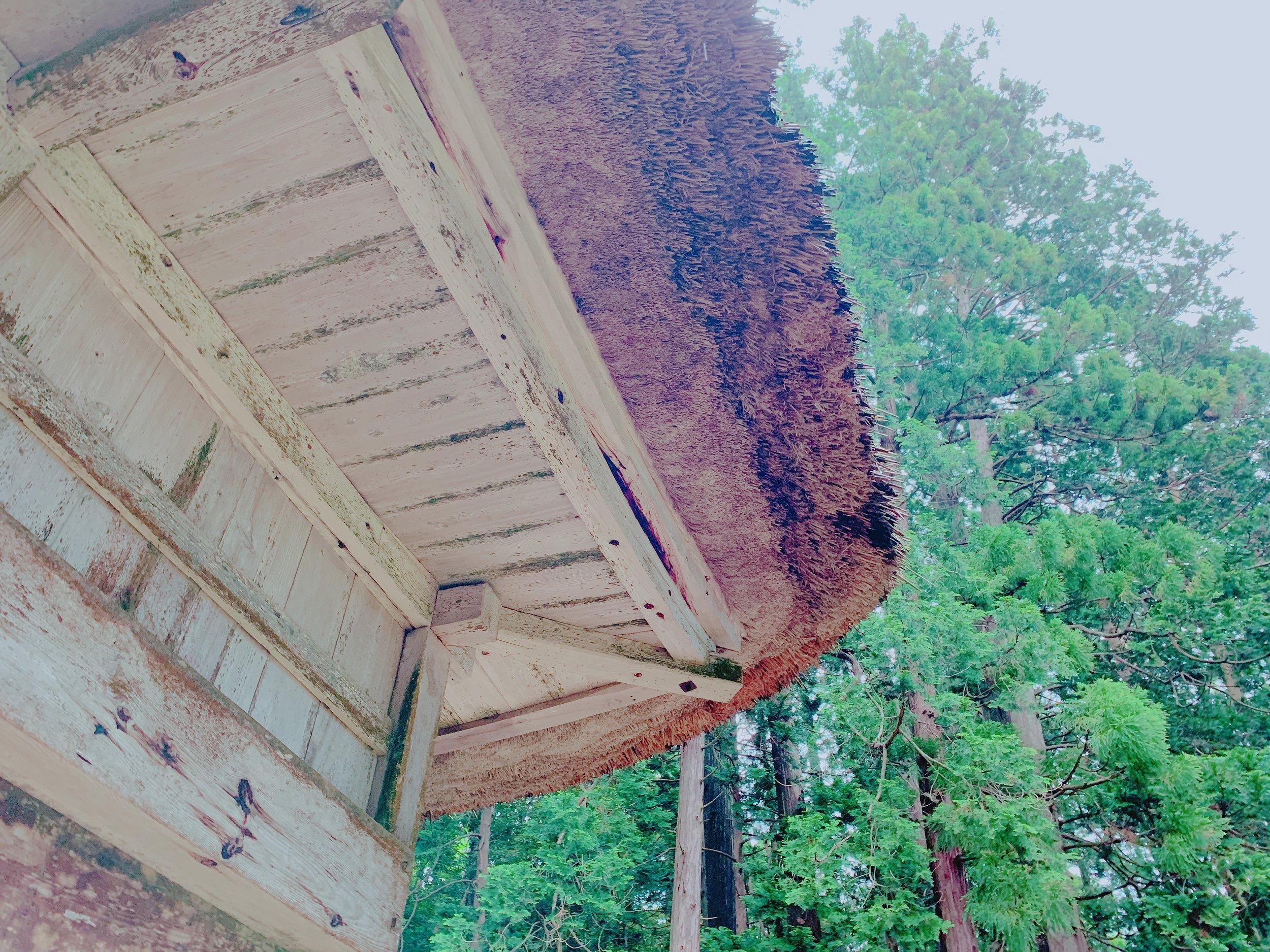 屋根に厚みがある