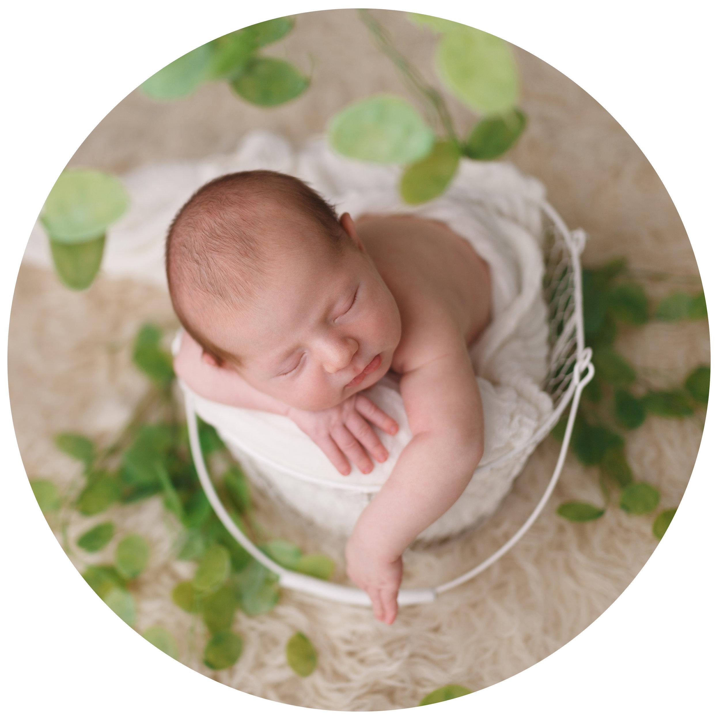 Basic | 250€* - Durata de 2-4 ore;Fotografii cu bebeluș și familia;40 de fotografii;Galeria clientului, protejată cu parolă.