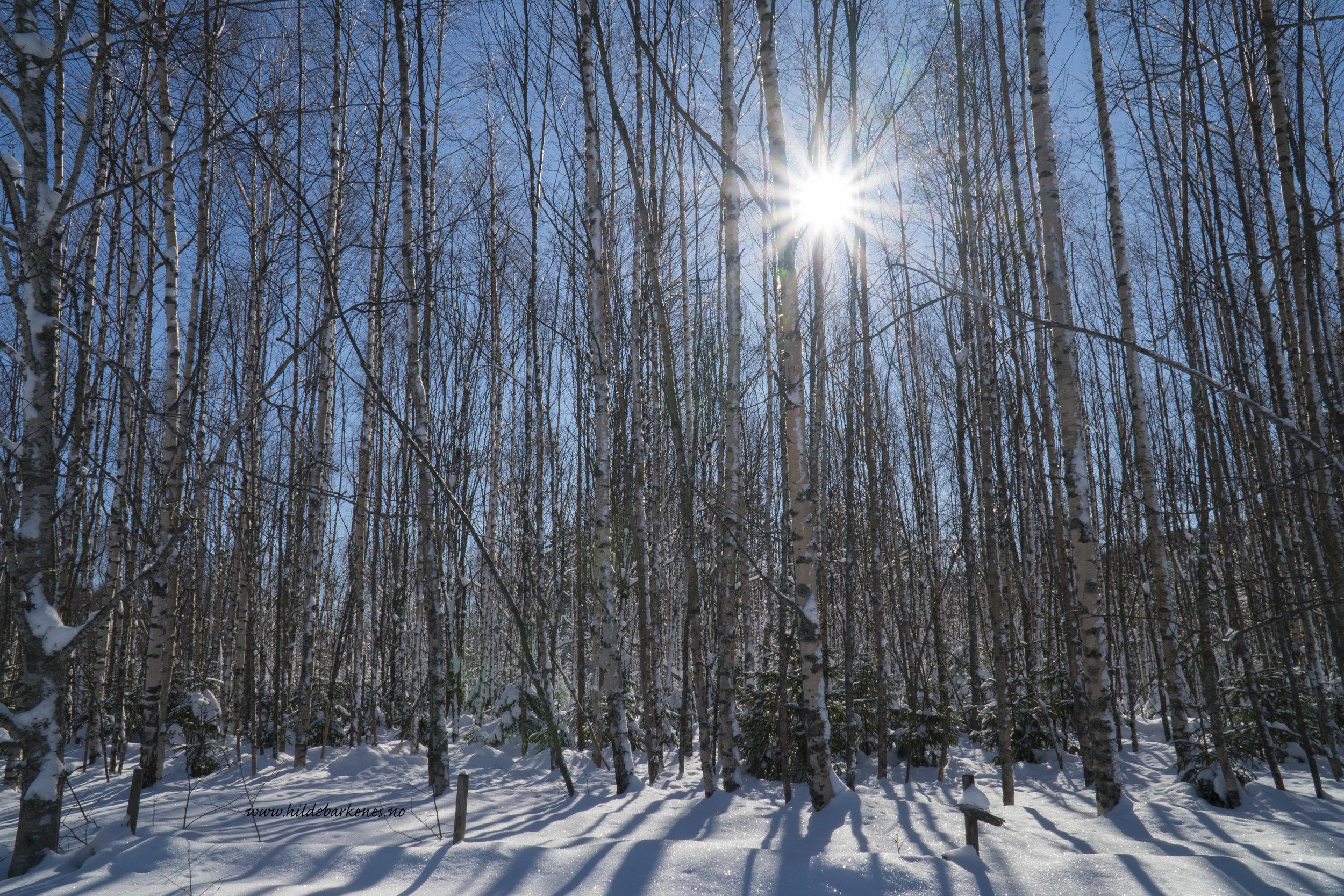 Sol ute, sol inne - sol i hjertet, sol i sinnetsol, bare sol 😃