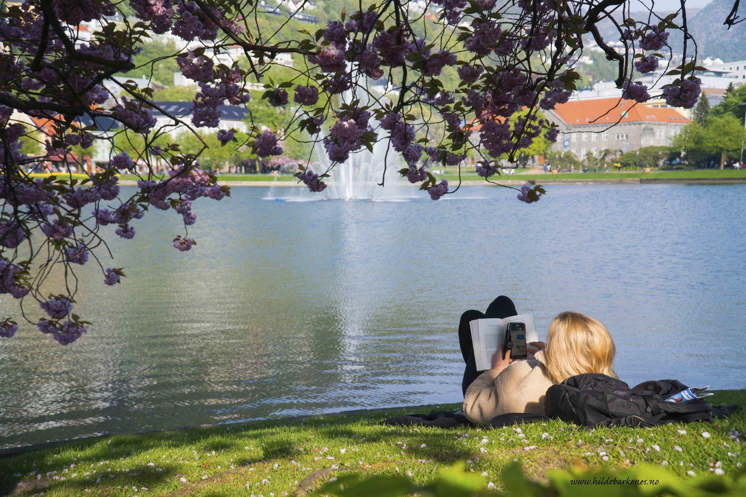BergenHildeBarkenes7.jpg