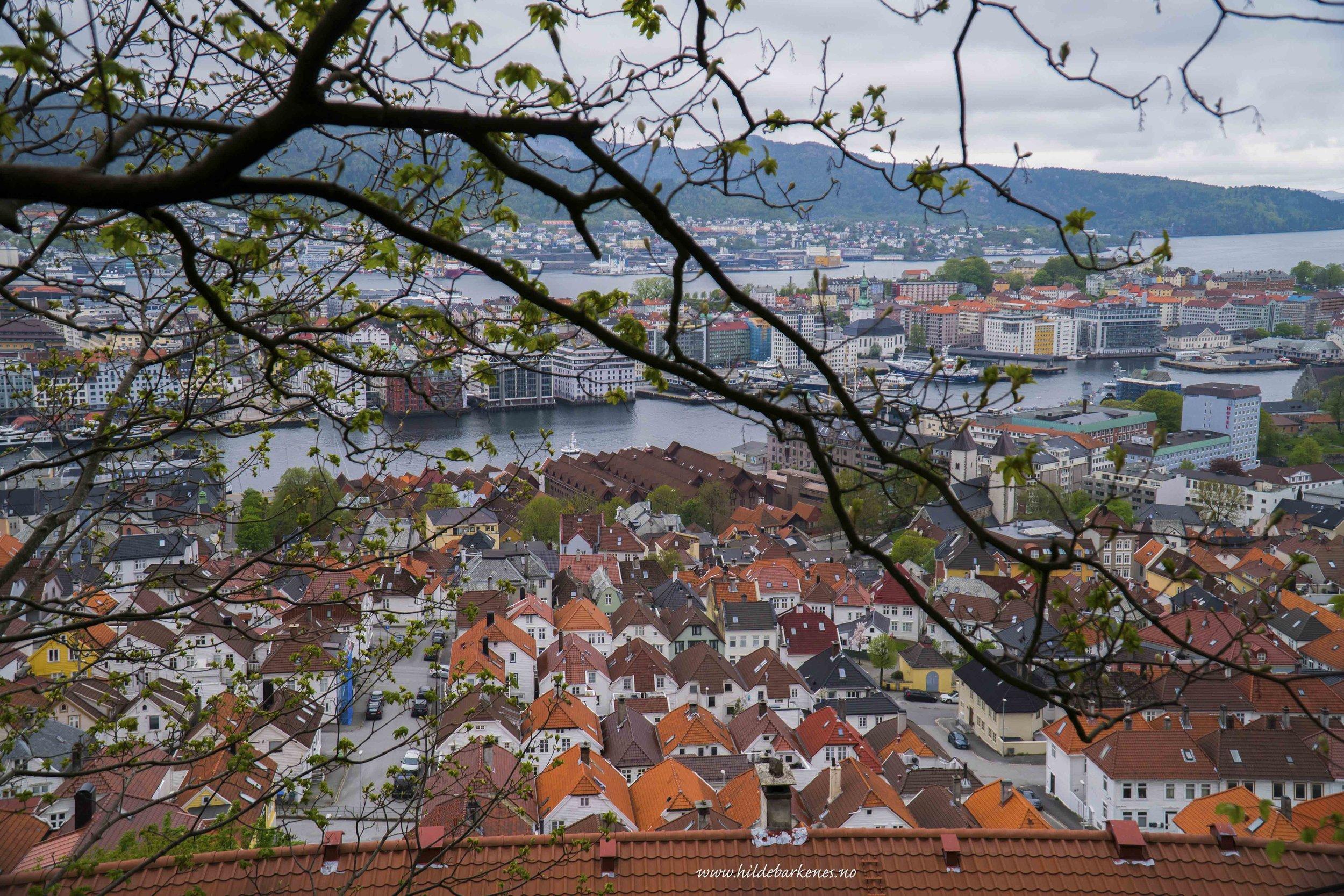 BergenHildeBarkenes14.jpg