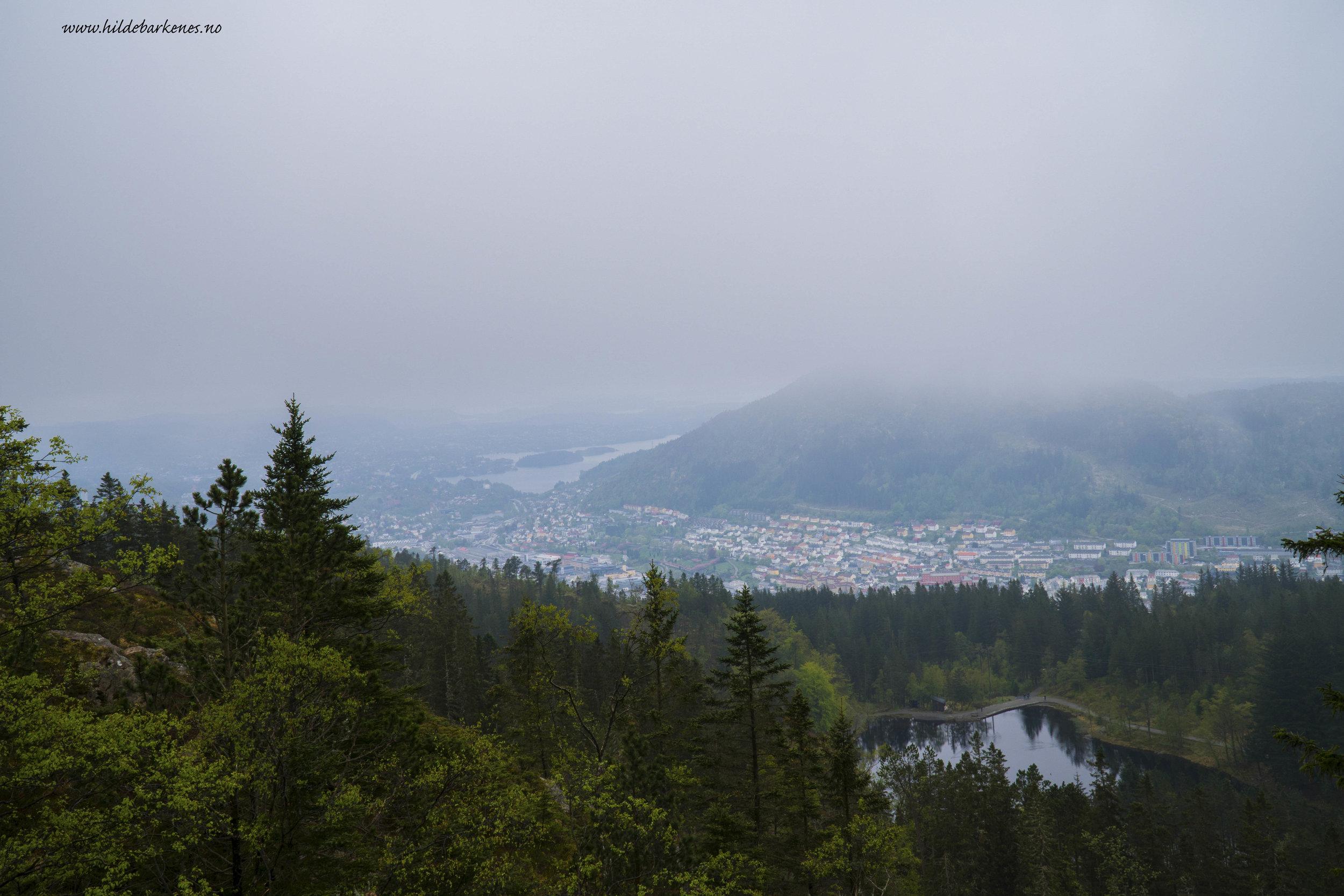 BergenHildeBarkenes12.jpg