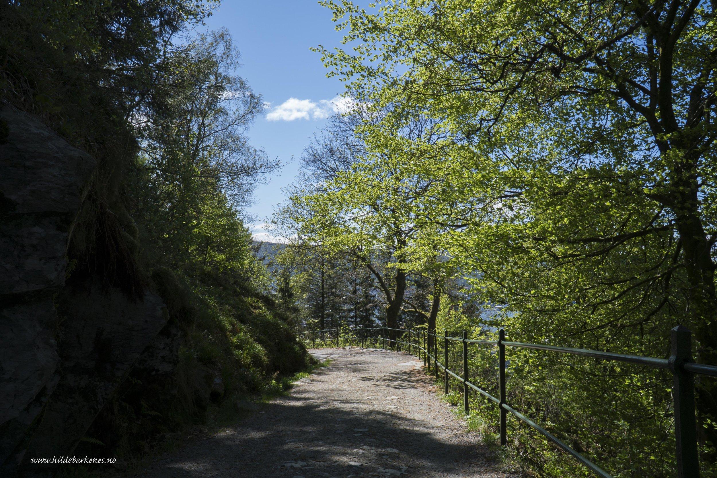 BergenHildeBarkenes24.jpg
