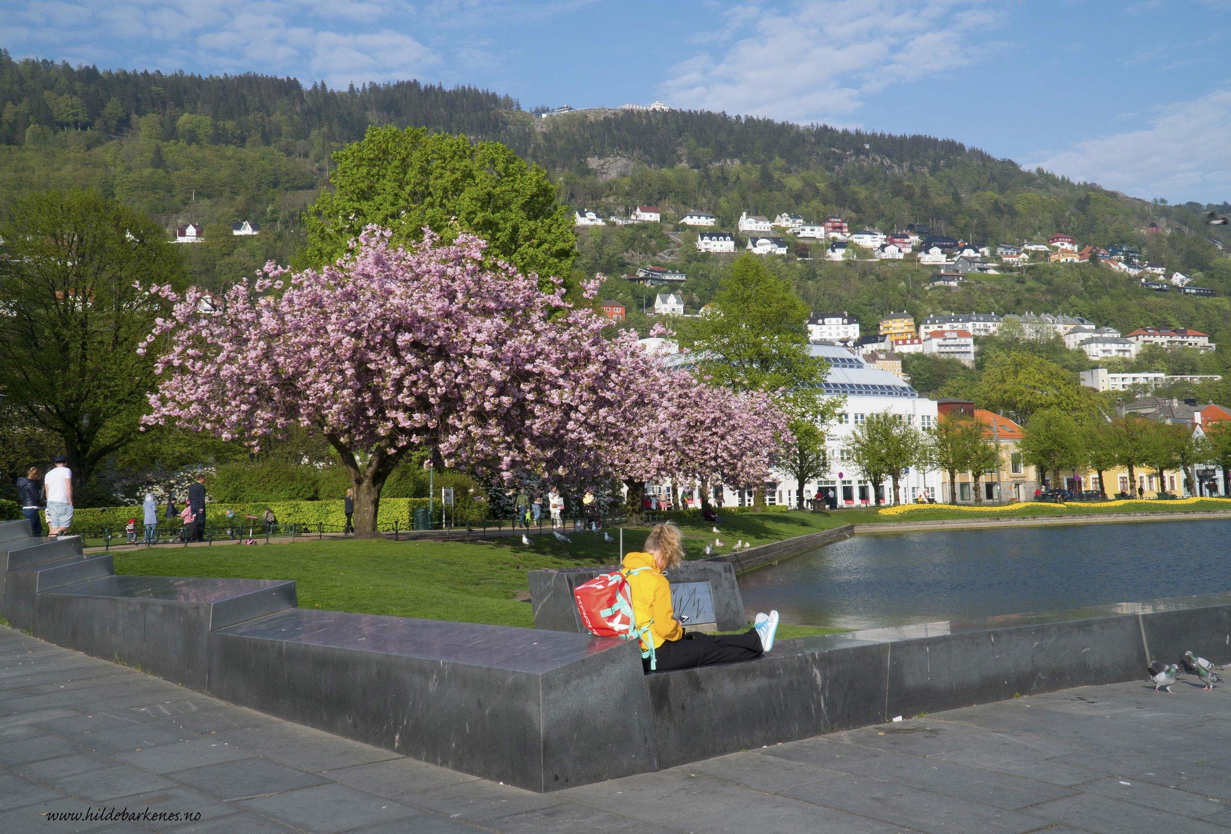BergenHildeBarkenes9.jpg