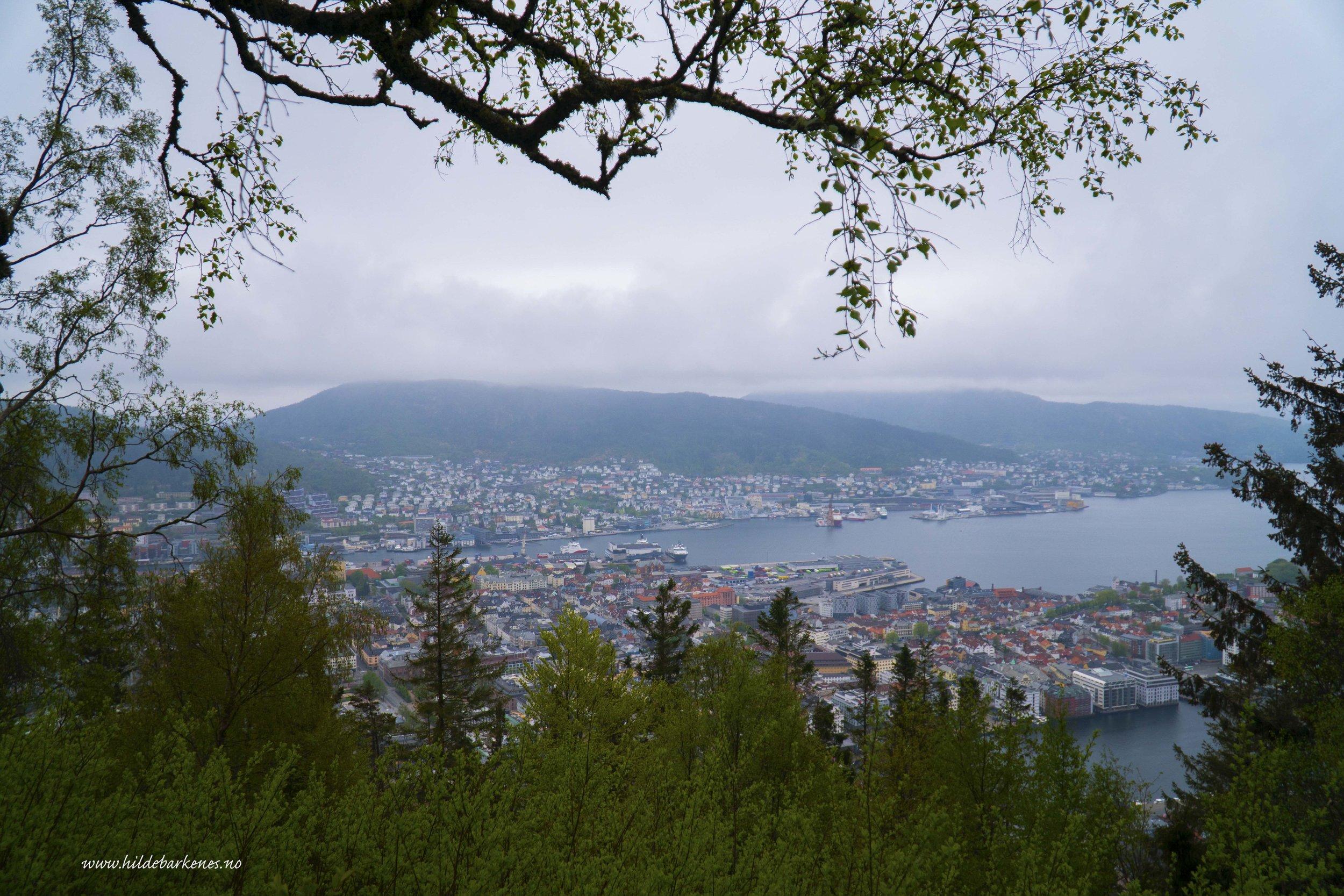 BergenHildeBarkenes27.jpg