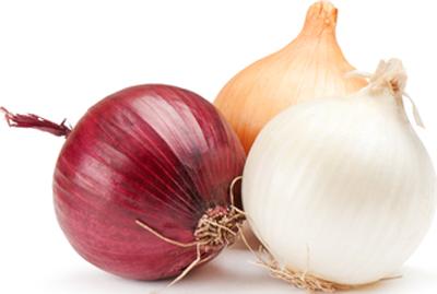 Cipolle Secche - Descrizione: La cipolla, Allium cepa, è una pianta coltivata bulbosa. Un mondo fantastico quello della cipolla, una delle più antiche specie orticole, attualmente coltivata in tutte le parti del mondo, mentre non si ritrova più allo stato spontaneo. Molto utile in cucina viene utilizzata per i soffritti, cruda nelle insalate e ricca di proprietà terapeutiche come decongestionante per la faringe, disintossicante per il fegato, per l'intestino, per l'anemia, antibiotico e vermifugo. La parte commestibile della pianta è il bulbo, del quale si consumano le squame (o tuniche) crude oppure cotte.Stagionalità: tutto l'anno.Proprietà: Il suo valore nutritivo dipende  soprattutto dalla presenza di sali minerali e di una certa quantità di vitamine, soprattutto la vitamina C, contiene anche enzimi (fermenti) in abbondanza che stimolano la digestione e il metabolismo; oligoelementi (zolfo, ferro, potassio, magnesio, fluoro, calcio, manganese e fosforo); vitamine (A, complesso B, C, E); flavonoidi dall'azione diuretica e, infine, la glucochinina, un ormone vegetale dall'azione antidiabetica.