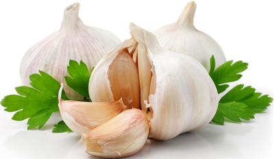 Aglio - Descrizione: è il bulbo dell'Allium sativum, una pianta coltivata bulbosa della famiglia delle Liliaceae. È antichissimo e per il suo inconfondibile sapore e odore, trova un uso molto versatile in cucina come aromatizzante o come ingrediente principe di alcune ricette come il Pesto alla genovese. Si può consumare indistintamente sia cotto, sia crudo, sia secco, che fresco. Quest'ultimo ha un aroma più intenso e si trova nei mesi estivi. Utile soprattutto per fare conserve di aglio marinato. È facile da coltivare anche sul balcone, è afrodisiaco, possiede tantissime proprietà terapeutiche. Stagionalità: Quello fresco lo si trova nei mesi estivi, mentre quello essiccato lo si trova tutto l'anno.Proprietà: L'aglio ha diverse proprietà curative. È antiipertensivo, antibatterico, antielmintico (gli elminti sono una classe di vermi che possono parassitare l'intestino), antiossidante. È utile per prevenire raffreddore e influenza, tubercolosi, bronchite, foruncoli, tumori e malattie cutanee, antitrombotico. Tritato finemente sui cibi come sughi, carne ed insalate è un ottimo coadiuvante per la cura dell'ipercolesterolemia; bronchiti catarrali; elmintiasi (nei bambini in special modo poiché portano sporcizia alla bocca). Il consumo di aglio dà un grande senso di benessere all'organismo per la sua azione anti batterica quindi antiinfettiva. Essendo anche un ottimo stimolante digestivo e diuretico viene anche utilizzato in forma di infuso (dai 5 ai 10 gr in un litro di acqua) mentre per un'azione antisettica dai 10-15 gr in decotto. È ricco di potassio.