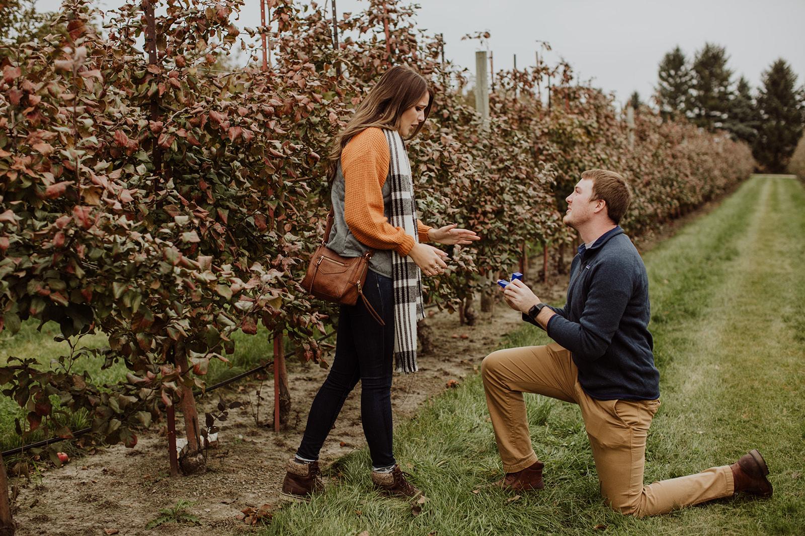 Taylor & Jen's Apple Orchard Surprise Engagement - Jonamac Orchard, IL