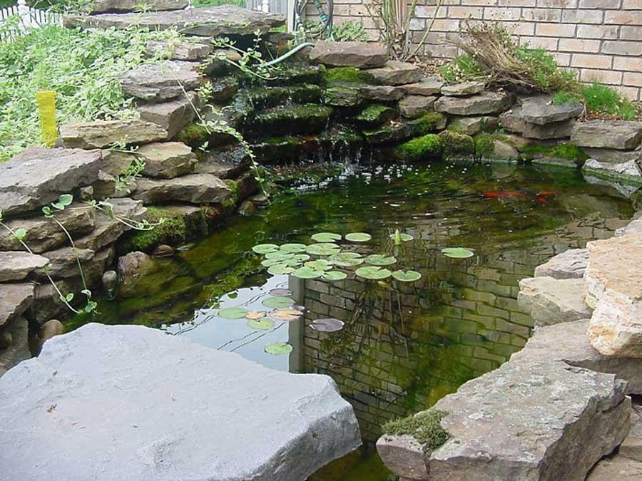 garden-pond-designs-uk.jpg