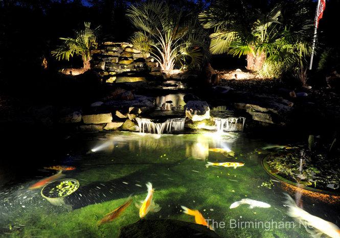 koi-pond-accent-lighting.jpg